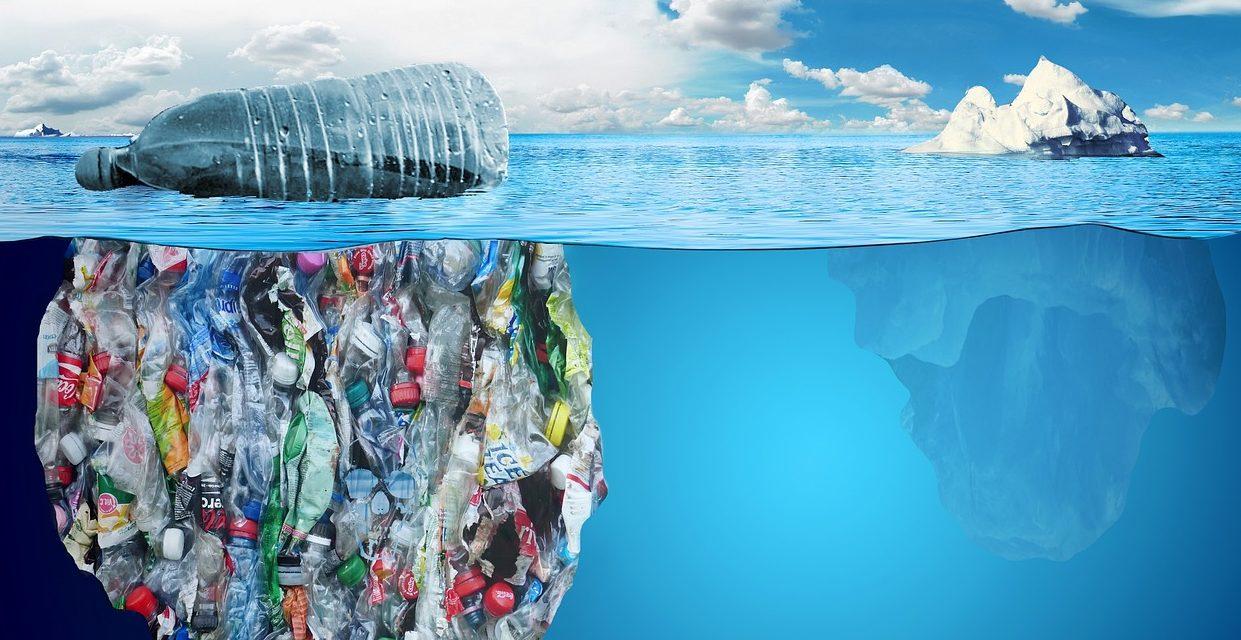 L'emergenza acqua è il tema portante della quarta edizione di Seeds and Chips